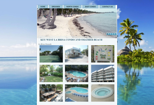 Website-Design-NY-003
